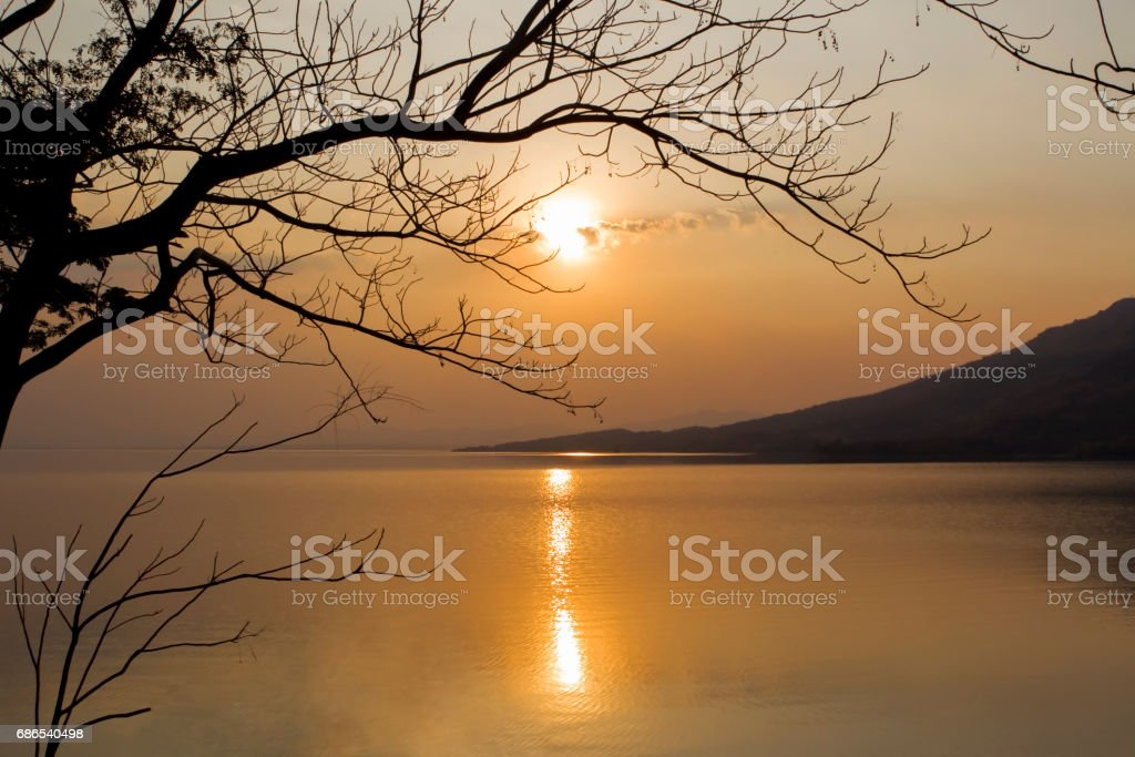 a scenic view of the lake , mountain and silhouette branch of tree at sunset  . foto de stock libre de derechos