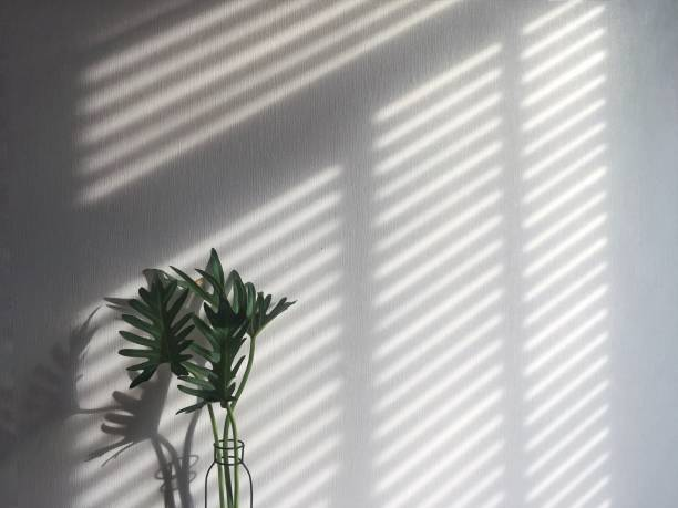 a shadow from wooden blind - blinds stock pictures, royalty-free photos & images