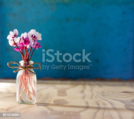 a small bouquet of flowers of cyclamen in a glass bottle on a wooden table. on a blue background with space for text