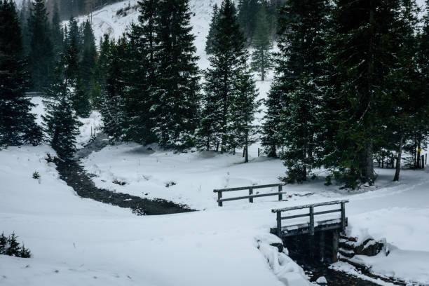 ein kleiner Fluss fließt durch die verschneite Landschaft unter einer Brücke – Foto