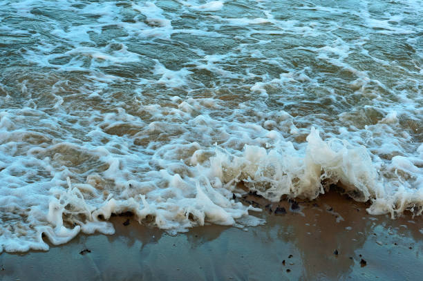 a small wave of the sea, the baltic sea waves, seascape - swashbuckler stock photos and pictures