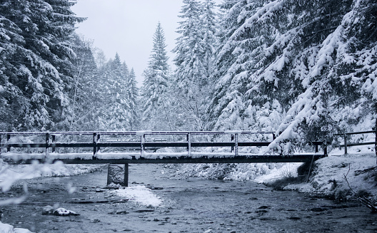 a snowfall over the river and the bridge in the forest