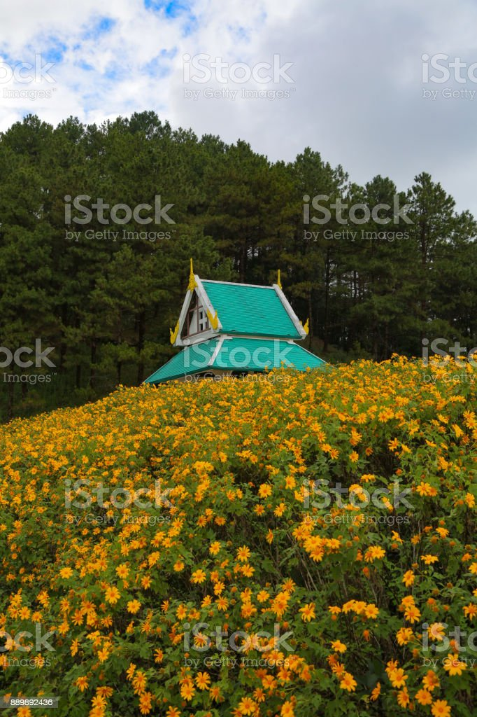 a temple atop a wildflower covered hill stock photo