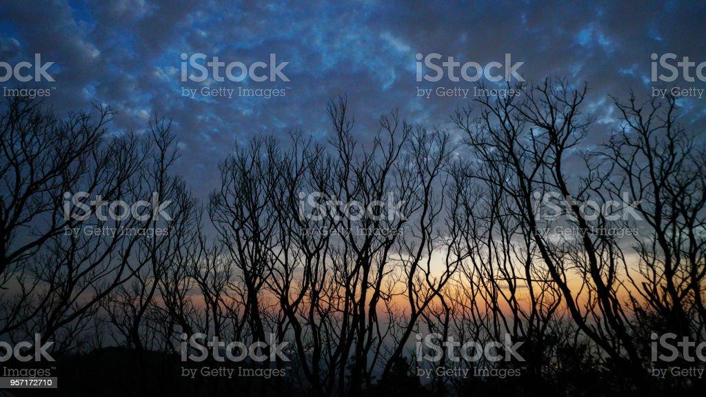a terrifying sunset stock photo