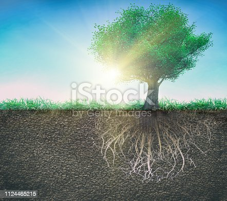 tree and soil with roots and grass 3D illustration