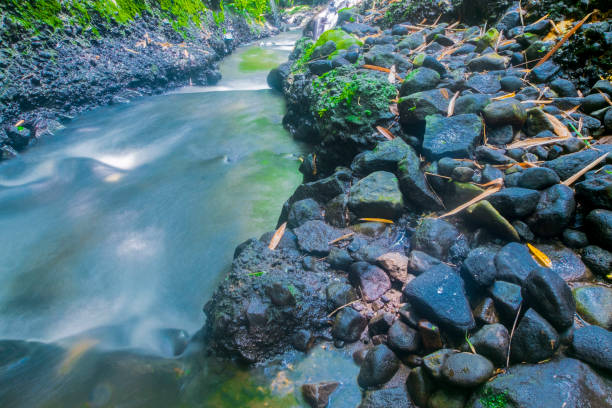 a very swift river flow with black stones stock photo