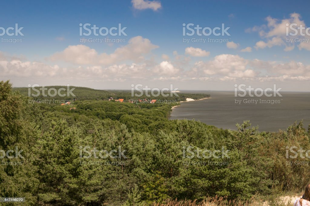 a view of the forest and the Baltic sea coast stock photo