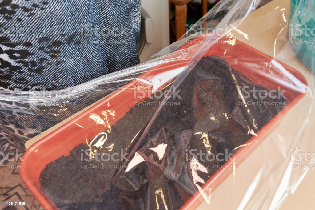 A Woman Covers A Brown Plastic Box With Cellophane Wrap With