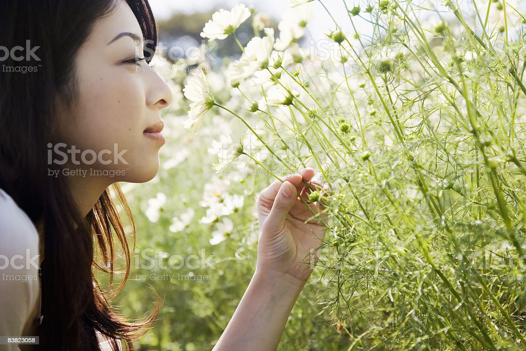 a woman smelling a flower foto stock royalty-free