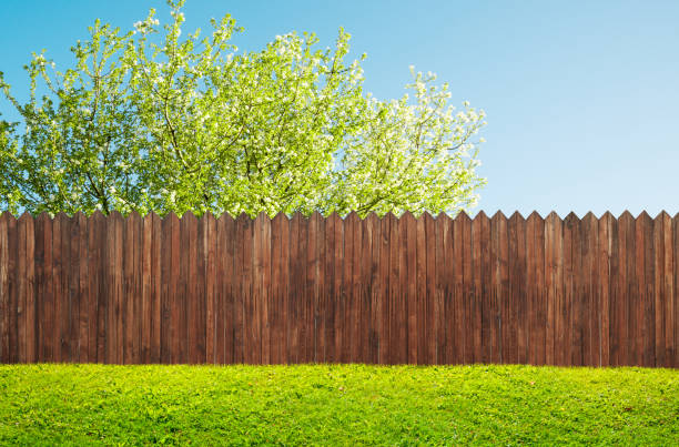 a wooden garden fence at backyard and bloom tree in spring - backyard stock pictures, royalty-free photos & images