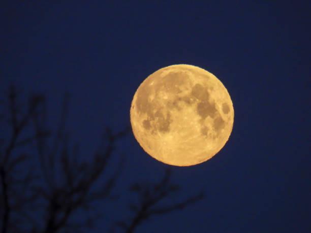 Ein gelber Vollmond am Morgenhimmel – Foto