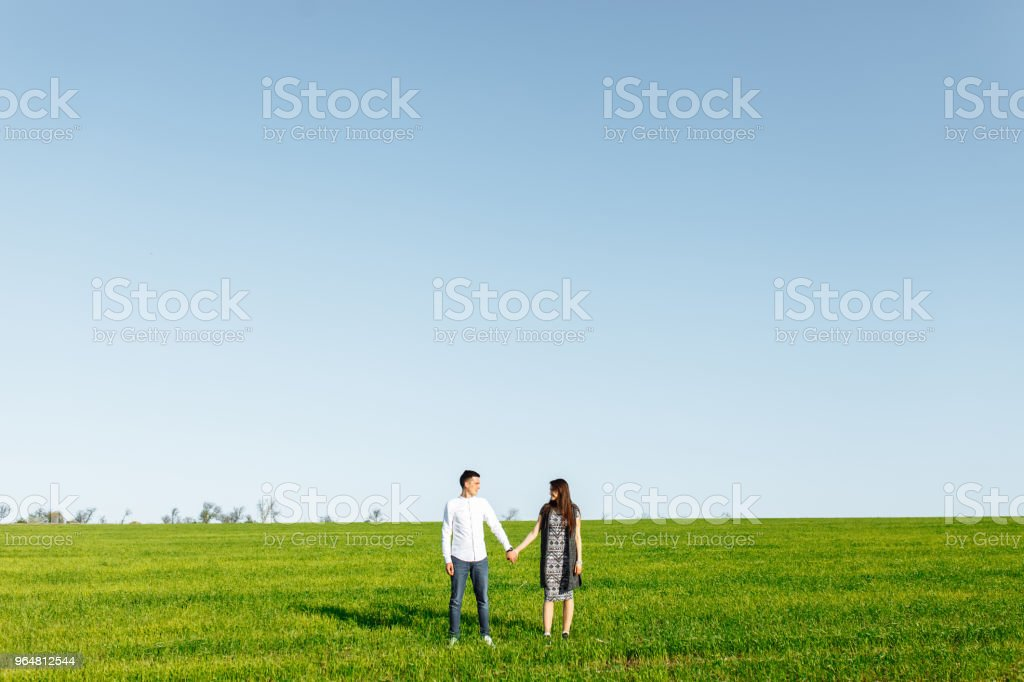 a young, happy, loving couple, standing in a green field, against the sky by the hands , and enjoy each other, advertising, and inserting text royalty-free stock photo