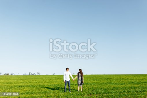 A Young Happy Loving Couple Standing In A Green Field Against The Sky By The Hands And Enjoy Each Other Advertising And Inserting Text Stock Photo & More Pictures of Adult