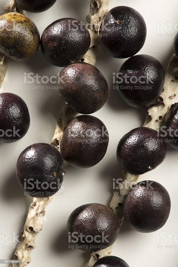Açai berry fruit royalty-free stock photo