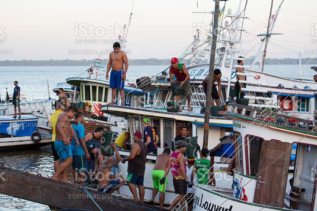 Açai Market, Mercado Ver o Peso, Belém, Pará State, Brazil stock photo