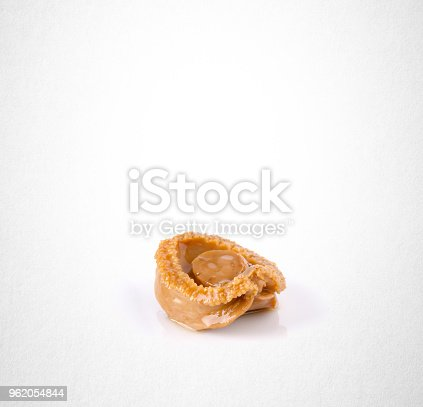 istock abalones or raw abalones on the background 962054844