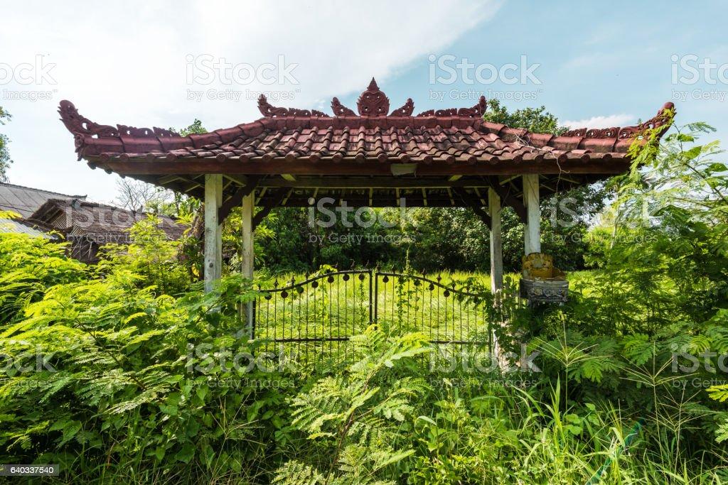 abandon gate in jungle stock photo