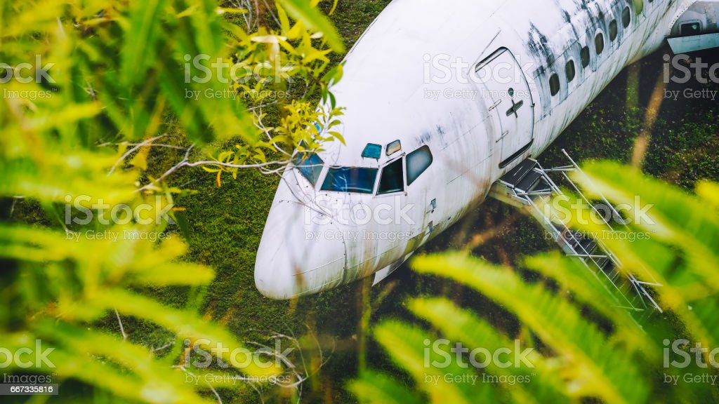 Abandoned aircraft between leaves, Bali, Indonesia stock photo