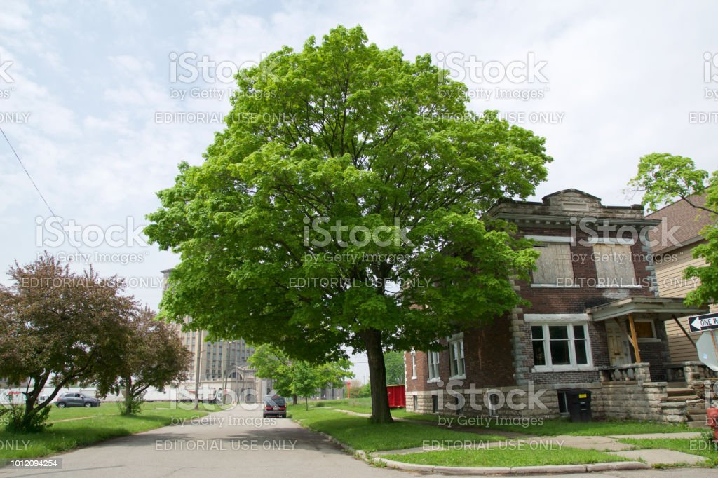 Abandoned and damaged single family home near downtown Detroit stock photo