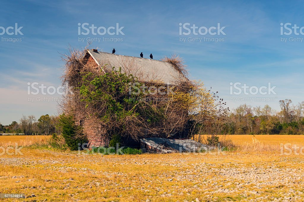 Abandoned and Ruined stock photo