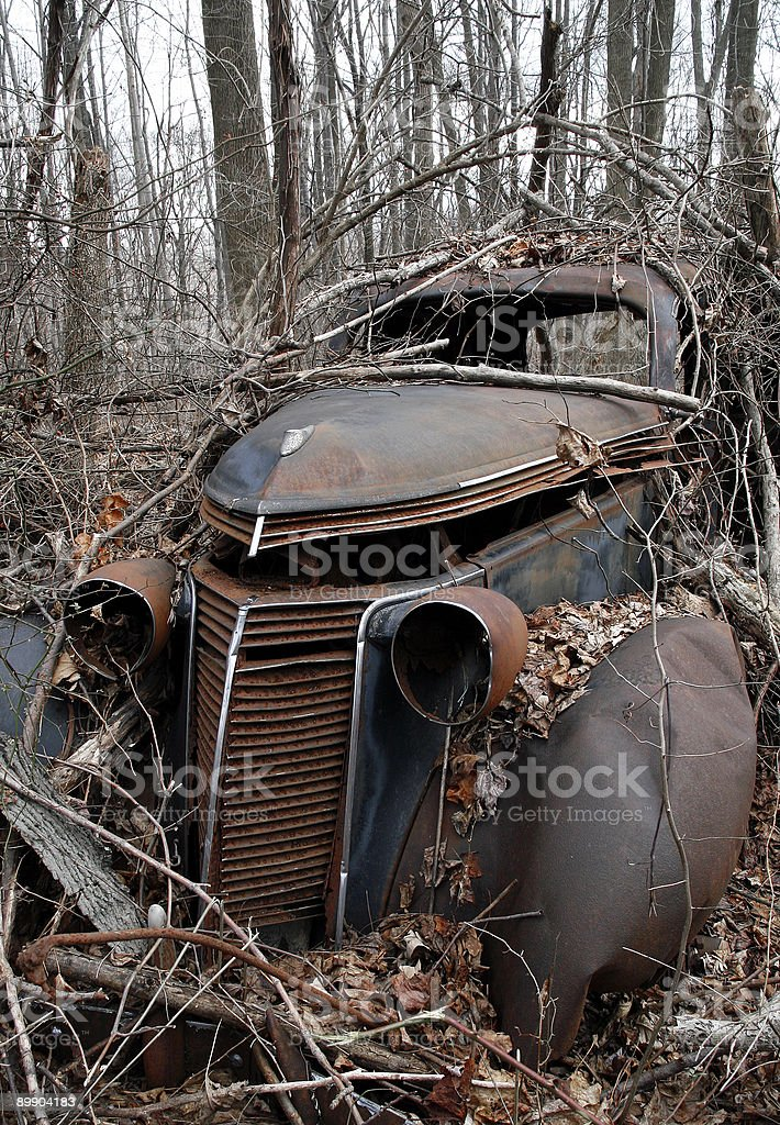 abandoned automobile in the woods royalty-free stock photo