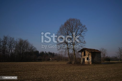 istock Abandoned Barn in a field 1296900605