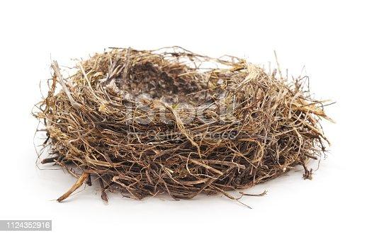 Abandoned bird nest isolated on white background.