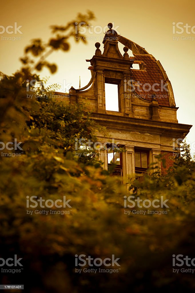 Abandoned building in forest stock photo