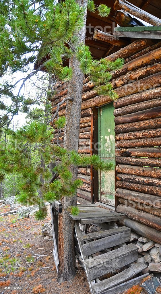 Abandoned Cabin in the Pines - Front Door stock photo