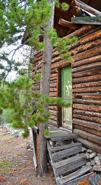 Abandoned Cabin in the Pines - Front Door stock photo