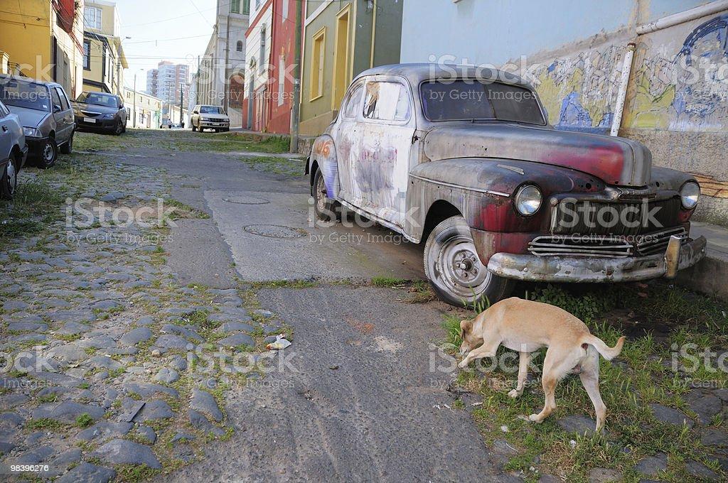 포기됨 자동차모드 및 경견 royalty-free 스톡 사진