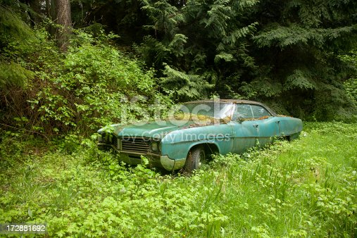 An old car slowly rusts away under a blanket of growing moss.