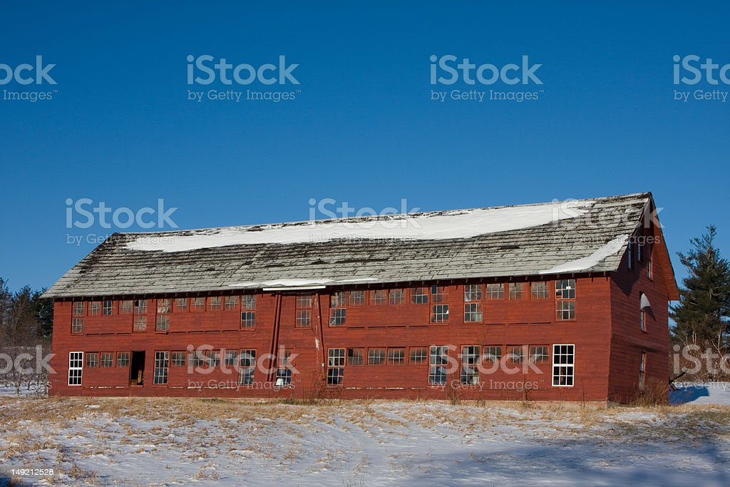 Abandoned Chicken Coop in Apple Orchard stock photo