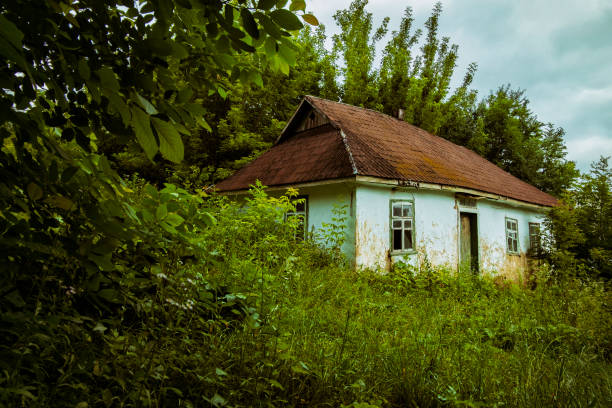 Abandoned clay house in a Ukrainian village. Old shack in the thicket stock photo