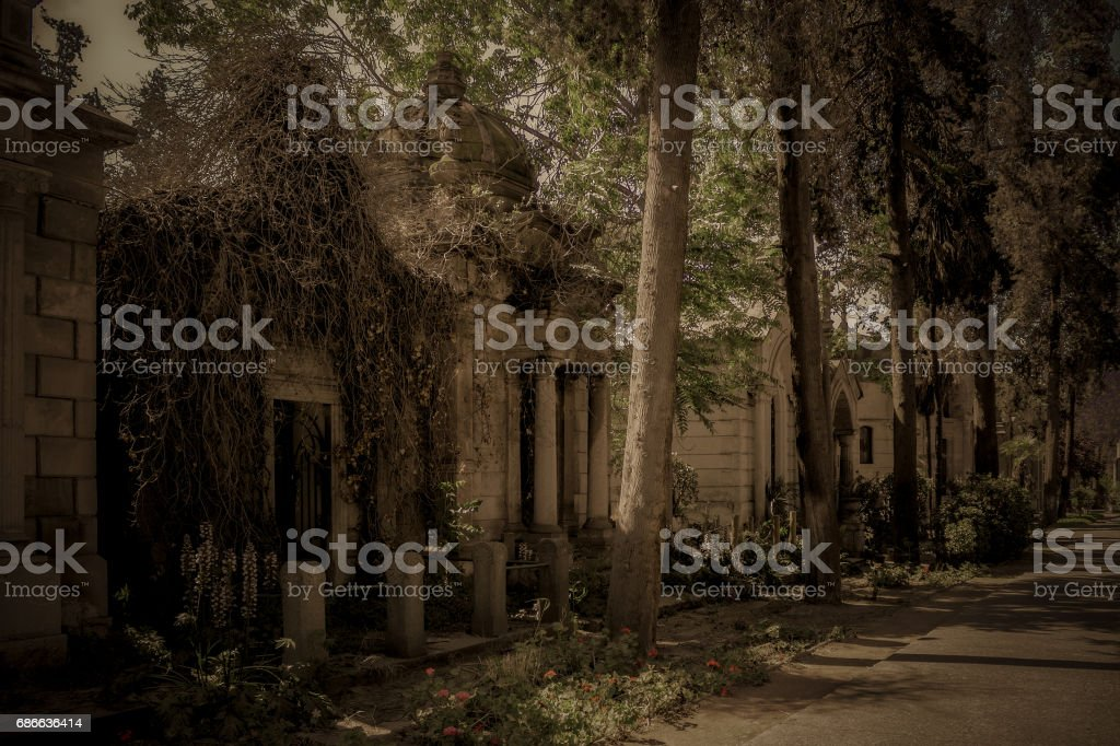 Abandoned crypt at the cemetery royalty-free stock photo