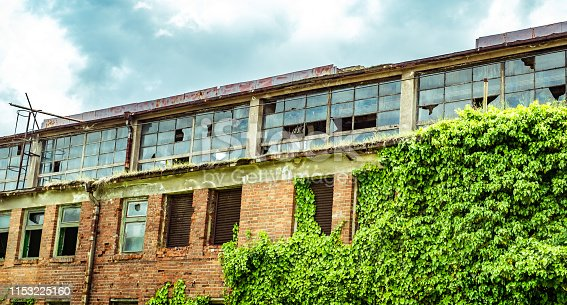 abandoned factory warehouse with broken windows and covered in green ivy plant