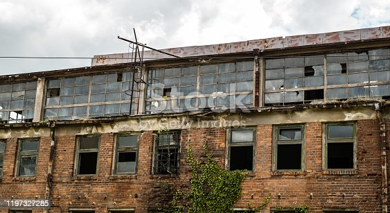 abandoned factory warehouse with broken windows and covered in green ivy plant, Sibiu, Romania