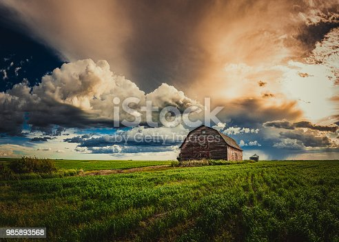 Abandoned barns and homes on the prairies in spring after a rain.