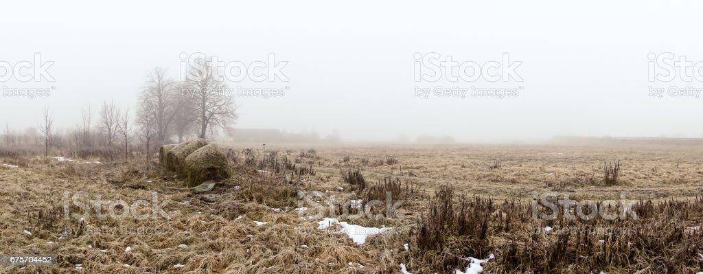 廢棄的農舍,在晨霧的道路。 免版稅 stock photo