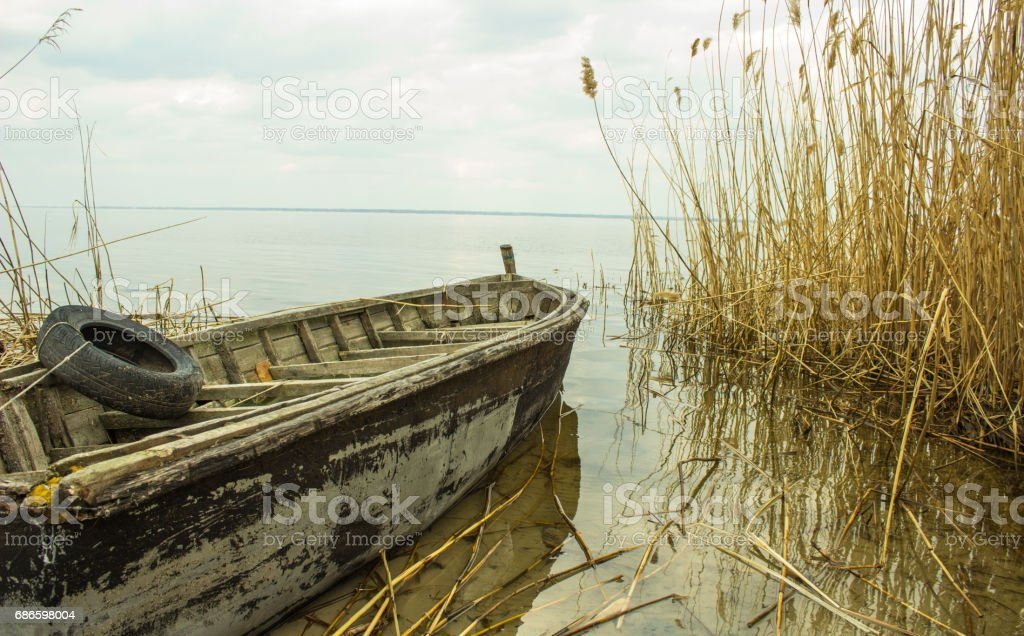 Abandoned fishing boat on the river in the reeds royalty-free stock photo