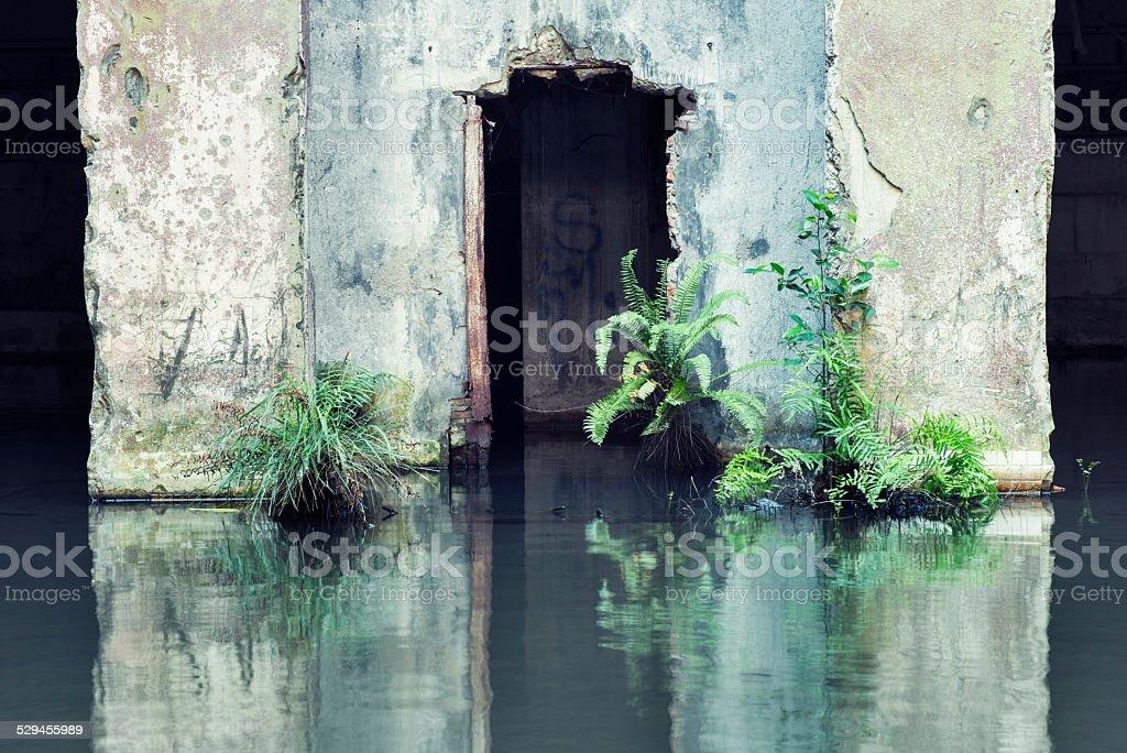 Abandonado permiten la entrada de la arquitectura urbana Ruina - foto de stock