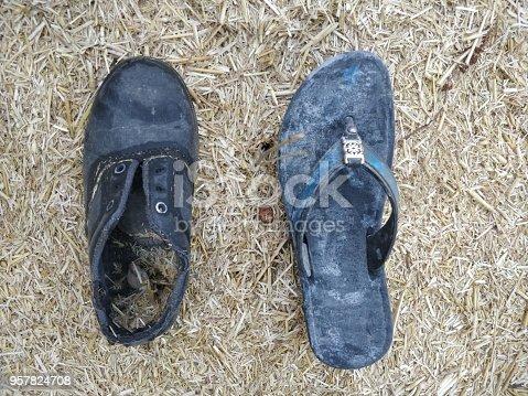 959792752 istock photo Abandoned footwear on beach 957824708