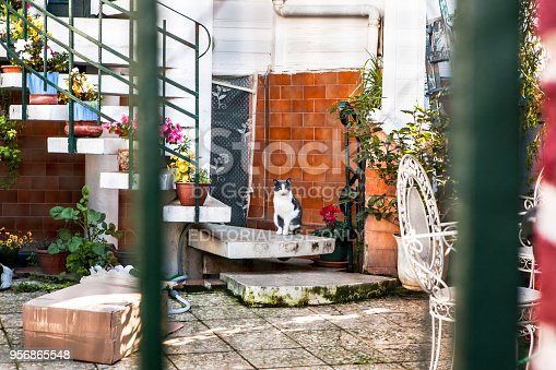 Istanbul, Turkey - January 1, 2018: A detached house in Mediterranean architecture. The abandoned house courtyard in Buyukada. Buyukada is only one of the tourism regions of Istanbul.