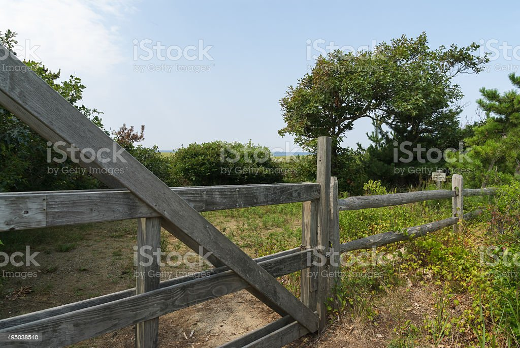 Abandoned Garden Behind  Closed Gate stock photo