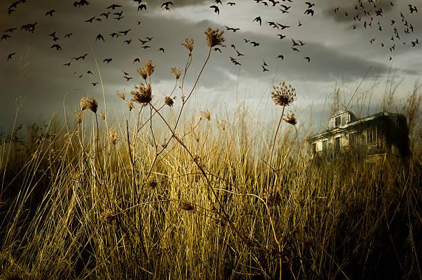 Verlassenen Geisterhaus – Foto