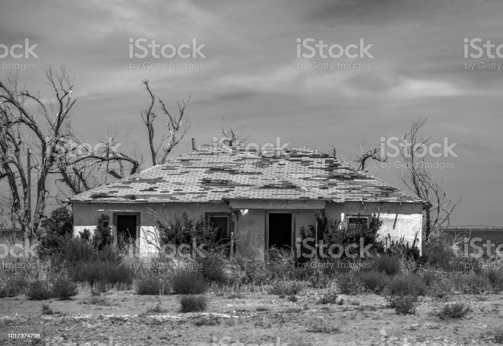 abandoned home roadside in Texas with shrubs monochrome stock photo