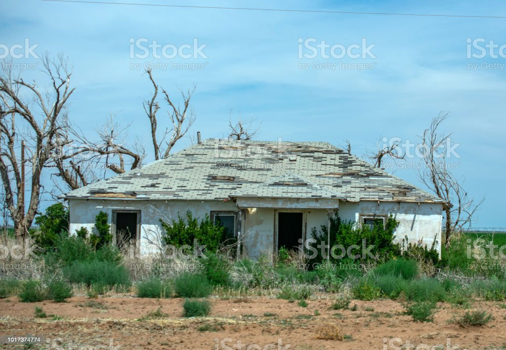 abandoned home roadside in Texas with shrubs stock photo