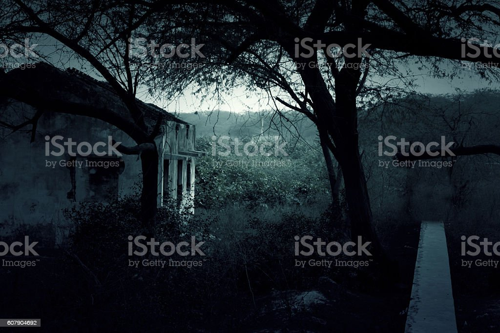 Abandoned house in wilderness area stock photo