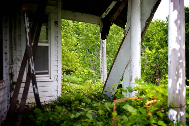 Abandoned House with vines growing on porch stock photo