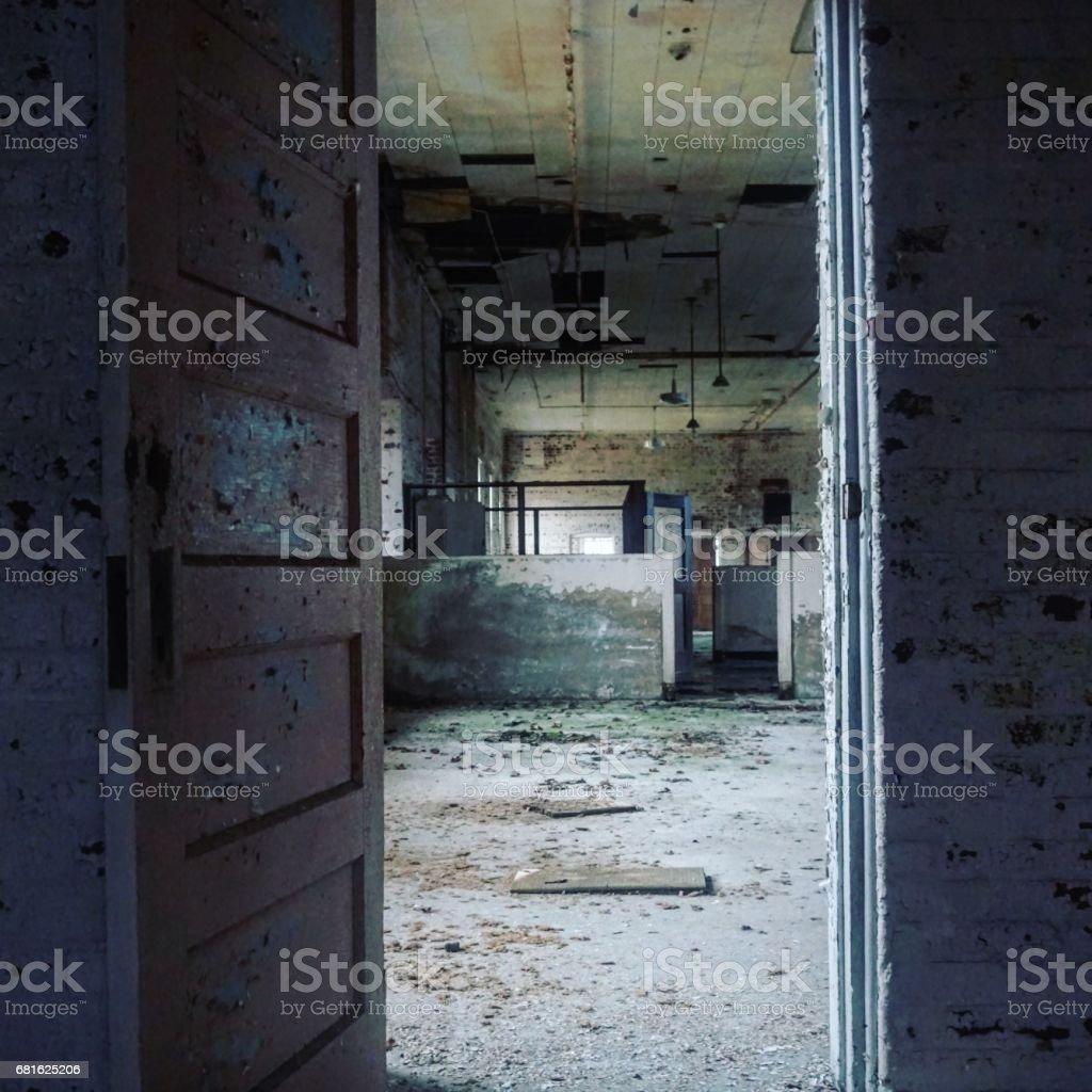 Abandoned Insane Asylum Stock Photo Download Image Now Istock